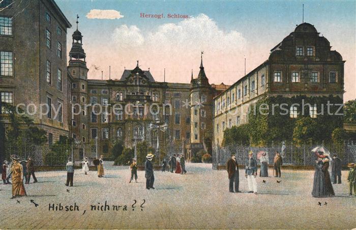 AK / Ansichtskarte Dessau Rosslau Herzogliches Schloss Hibsch nich wa Kat. Dessau Rosslau
