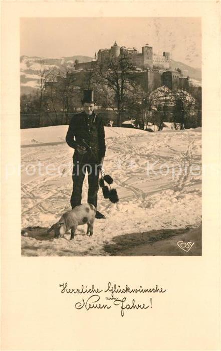 AK / Ansichtskarte Schornsteinfeger Schwein Neujahr  Kat. Handwerk