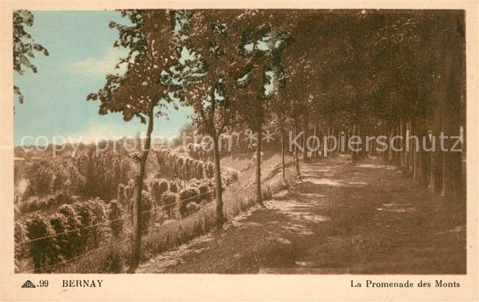 AK / Ansichtskarte Bernay La Promenade des Monts Kat. Bernay