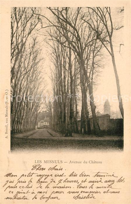 AK / Ansichtskarte Les Mesnuls Avenue du Chateau Kat. Les Mesnuls