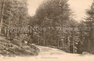 AK / Ansichtskarte Vizzavona Waldpartie Kat. Vivario