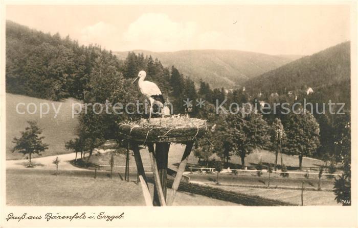 AK / Ansichtskarte Baerenfels Erzgebirge Storch im Storchennest Kat. Altenberg