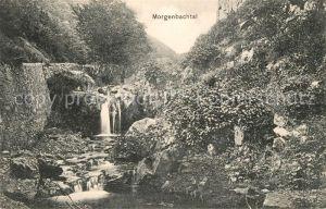 AK / Ansichtskarte Trechtingshausen Morgenbachtal Kat. Trechtingshausen