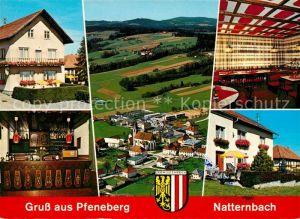 AK / Ansichtskarte Natternbach Pfeneberg Panorama Kat. Natternbach