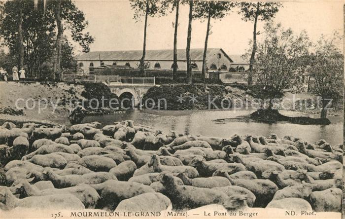 AK / Ansichtskarte Mourmelon le Grand Pont du Berger Kat. Mourmelon le Grand
