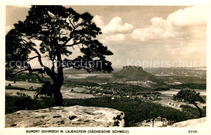 AK / Ansichtskarte Gohrisch Panorama Kurort mit Lilienstein Tafelberg Elbsandsteingebirge Kat. Gohrisch