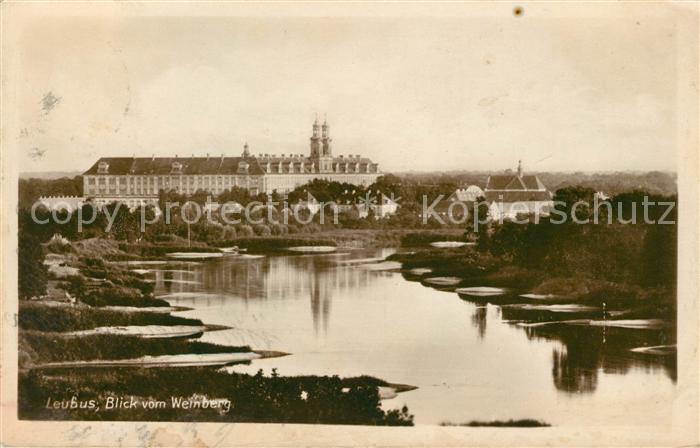 AK / Ansichtskarte Leubus Lubiaz Schloss Blick vom Weinberg Kat. Wolow Niederschlesien