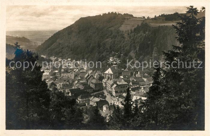 AK / Ansichtskarte Berneck Fichtelgebirge Panorama Blick von der schoenen Aussicht Kat. Bad Berneck