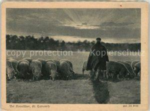 AK / Ansichtskarte Tarnowitz Tarnowskie Gory Schaefer mit Schafherde