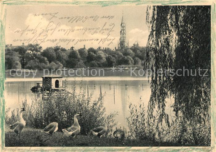 AK / Ansichtskarte Zwickau Sachsen Partie am Schwanenteich Blick auf den Dom Kat. Zwickau