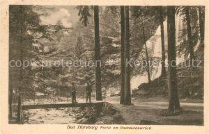 AK / Ansichtskarte Bad Harzburg Partie am Radauwasserfall Kat. Bad Harzburg