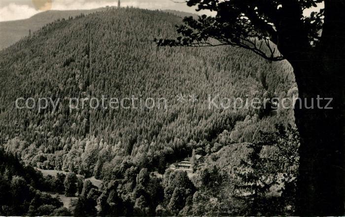 AK / Ansichtskarte Tabarz Lauchagrund Kat. Tabarz Thueringer Wald