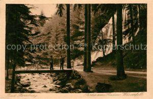 AK / Ansichtskarte Bad Harzburg Partie am Radau Wasserfall Kat. Bad Harzburg