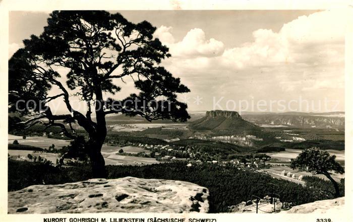 AK / Ansichtskarte Gohrisch Landschaftspanorama mit Lilienstein Tafelberg Elbsandsteingebirge Kat. Gohrisch