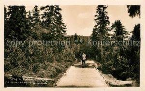 AK / Ansichtskarte Moldau Wanderweg beim Moldau Ursprung Kat. Tschechische Republik