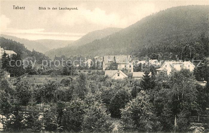 AK / Ansichtskarte Tabarz Panorama Blick in den Lauchagrund Kat. Tabarz Thueringer Wald