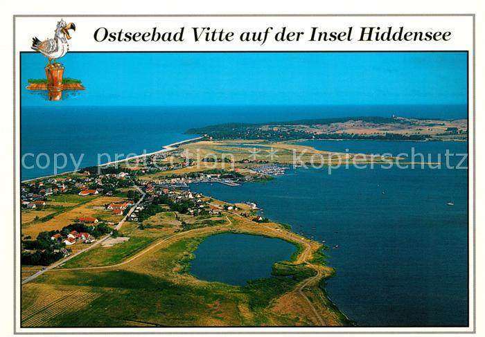AK / Ansichtskarte Vitte Hiddensee Fliegeraufnahme mit Dornbusch