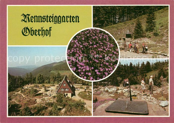 AK / Ansichtskarte Oberhof Thueringen Rennsteiggarten Teilansichten Kat. Oberhof Thueringen