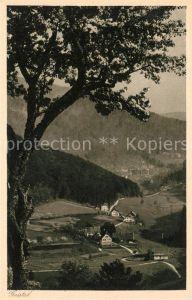 AK / Ansichtskarte Gaistal bei Bad Herrenalb Kat. Bad Herrenalb