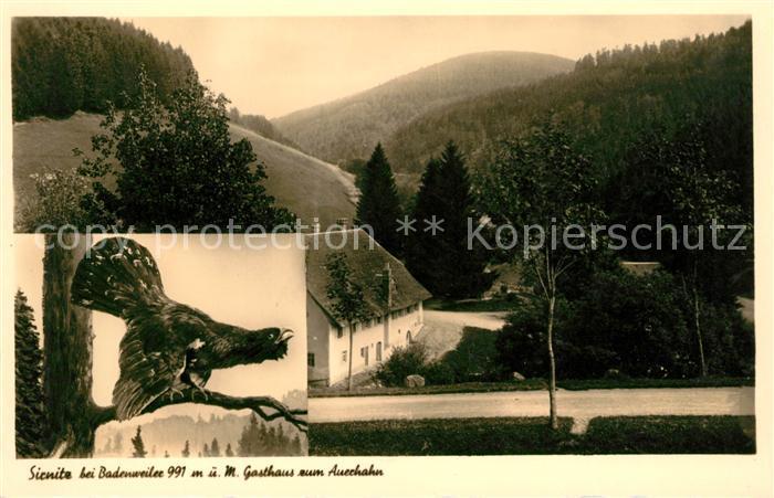 AK / Ansichtskarte Sirnitz Badenweiler Gasthaus zum Auerhahn