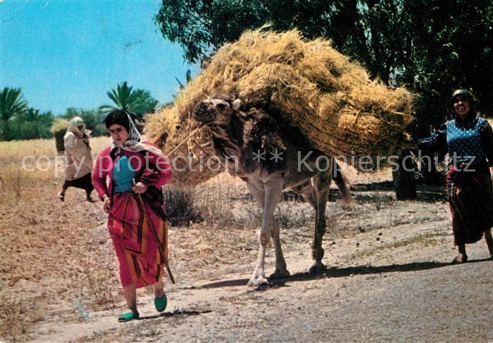 AK / Ansichtskarte Kerkennah La Moisson Kat. Tunesien