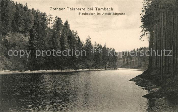 AK / Ansichtskarte Tambach Dietharz Gothaer Talsperre Staubecken im Apfelstaedtgrund Kat. Tambach Dietharz