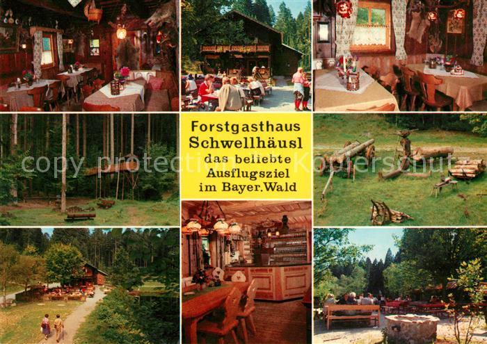 AK / Ansichtskarte Zwieslerwaldhaus Ausflugsgaststaette Cafe Schwellhaeusl Kat. Lindberg