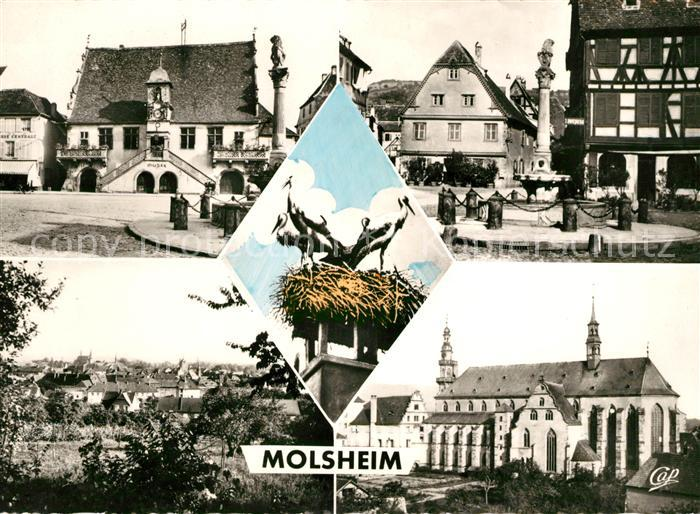 AK / Ansichtskarte Molsheim Grandes Boucheries Place de Hotel de Ville Vue generale Eglise des Jesuites Kat. Molsheim