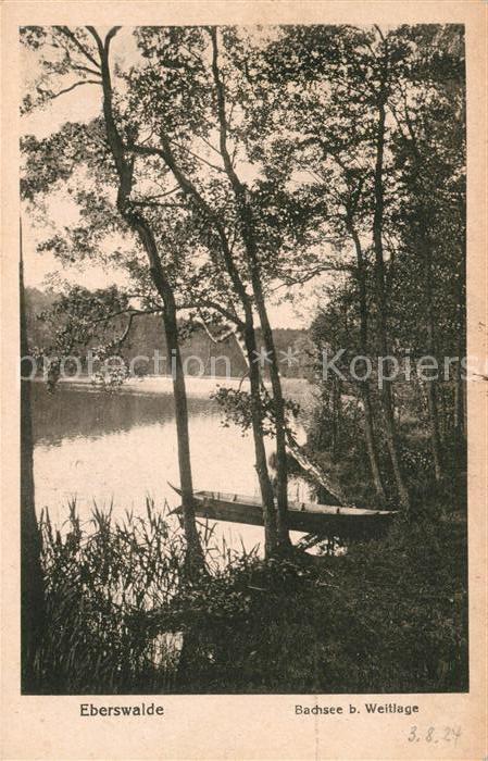 AK / Ansichtskarte Eberswalde Bachsee bei Weitlage Kat. Eberswalde Waldstadt