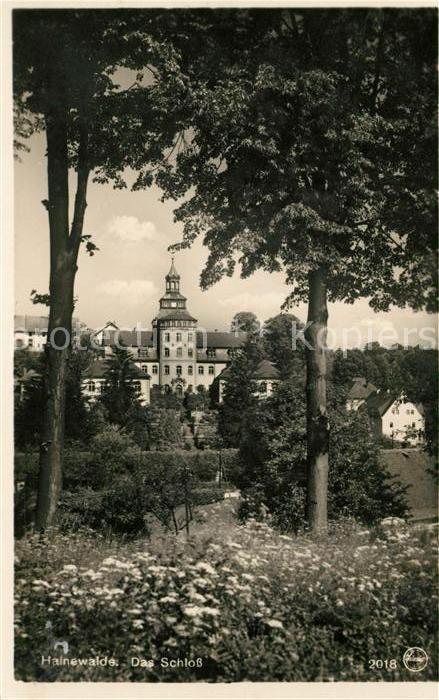 AK / Ansichtskarte Hainewalde Schloss Kat. Hainewalde