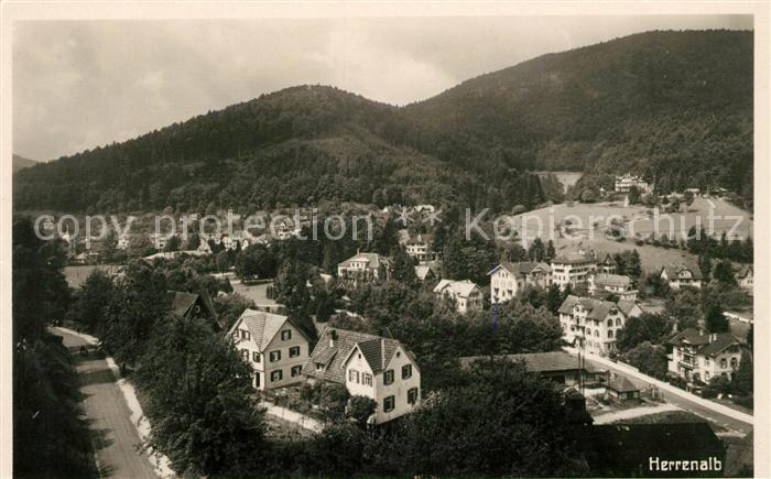 AK / Ansichtskarte Herrenalb Bad Panorama Kat. Bad Herrenalb