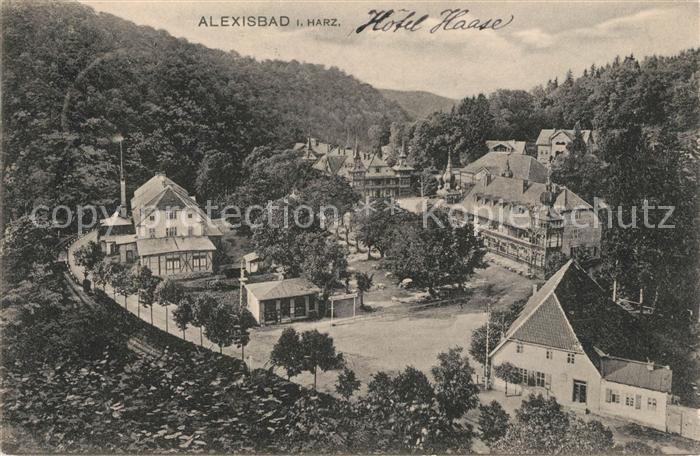 AK / Ansichtskarte Alexisbad Harz Hotel Haase Kat. Harzgerode