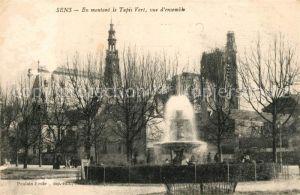 AK / Ansichtskarte Sens Yonne En montant le Tapis Vert