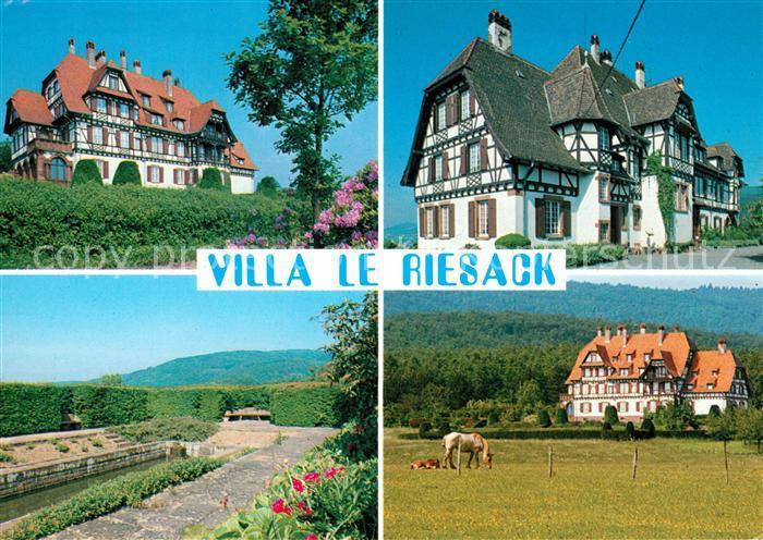 AK / Ansichtskarte Niederbronn les Bains Villa Le Riesack Kat. Niederbronn les Bains