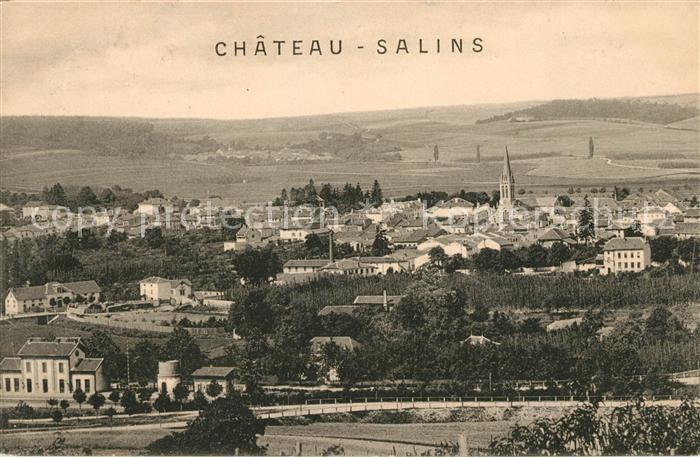 AK / Ansichtskarte Chateau Salins Panorama Kat. Chateau Salins