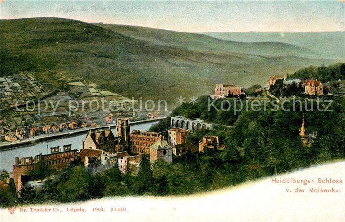 AK / Ansichtskarte Heidelberg Neckar Schloss und Neckar von der Molkenkur Kat. Heidelberg