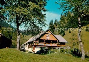 AK / Ansichtskarte Udine Alpe di Ugovizza Kat. Udine