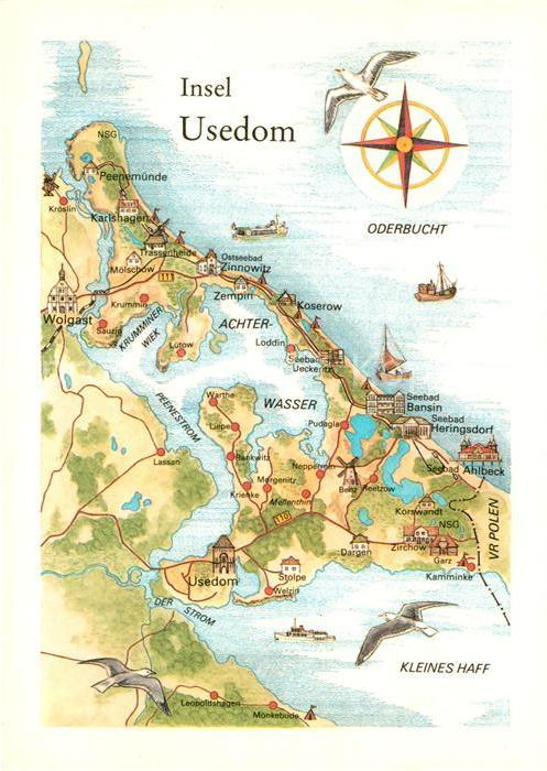AK / Ansichtskarte Insel Usedom Landkarte Oderbucht Kleines Haff Kompass Moewe