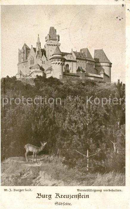 AK / Ansichtskarte Burg Kreuzenstein Burg Suedseite und Wild  Kat. Leobendorf
