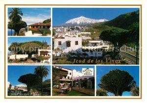 AK / Ansichtskarte Icod de los Vinos La Casa del Drago Kat. Tenerife Islas Canarias Spanien