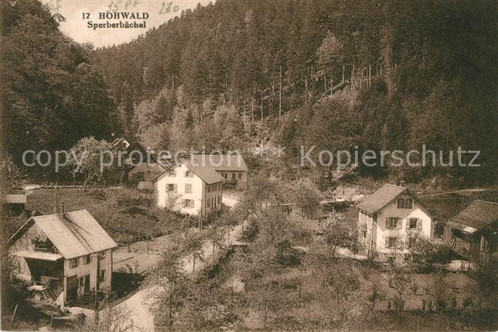 AK / Ansichtskarte Le Hohwald Sperberbaechel Kat. Le Hohwald
