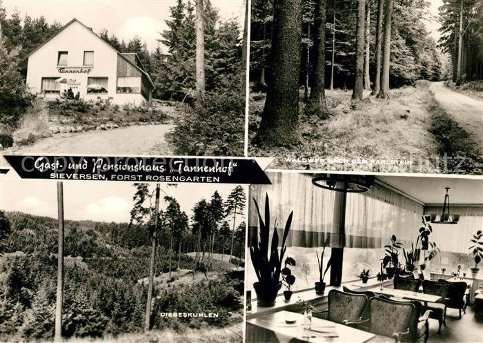 AK / Ansichtskarte Sieversen Gasthaus Pension Tannenhof Waldweg Landschaftspanorama Kat. Rosengarten