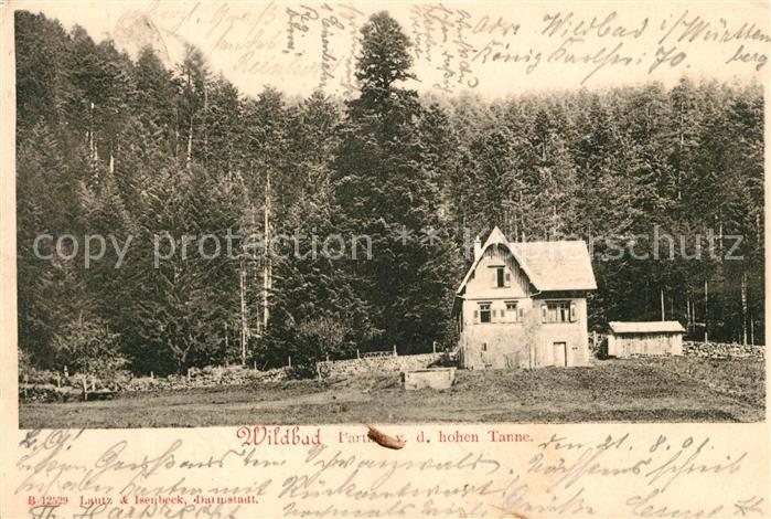 AK / Ansichtskarte Bad Wildbad Grosse Tanne Rollwassertal Forsthaus Kat. Bad Wildbad