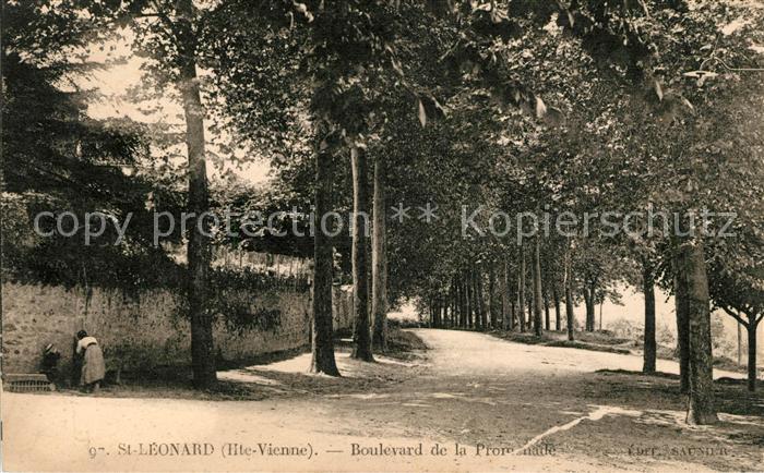 AK / Ansichtskarte Saint Leonard de Noblat Boulevard de la Promenade Kat. Saint Leonard de Noblat