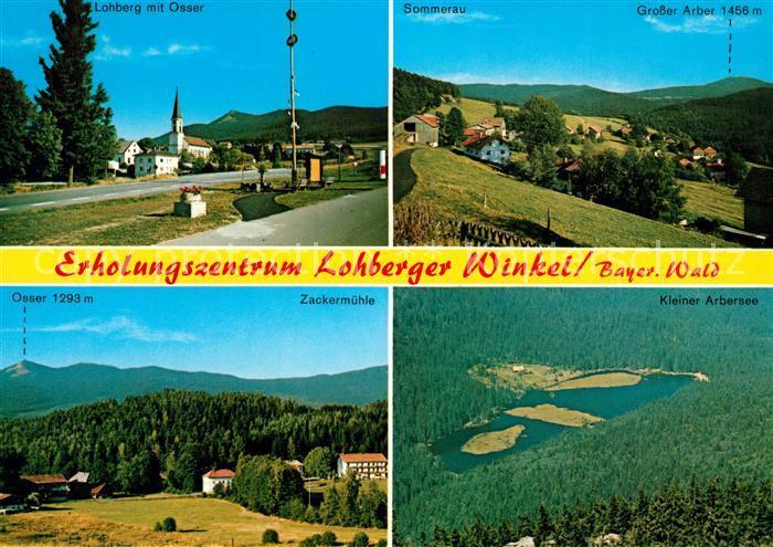 AK / Ansichtskarte Lohberg Lam Osser Sommerau Grosser Arber Zackermuehle Kleiner Arbersee Kat. Lohberg