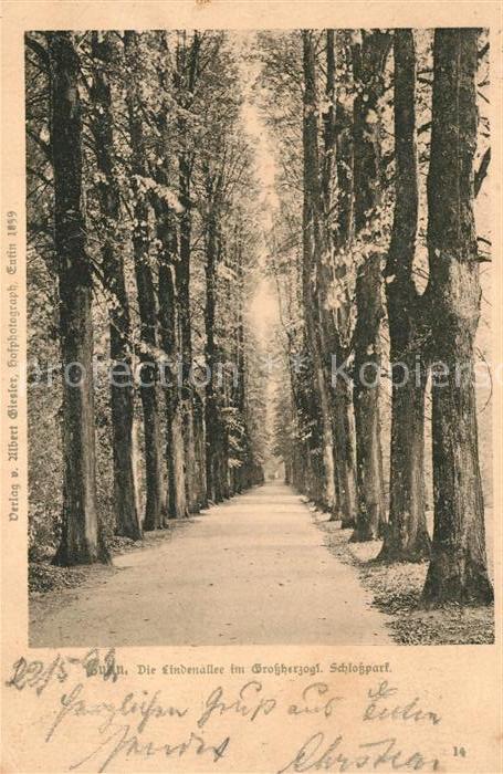 AK / Ansichtskarte Eutin Lindenallee im Grossherzogl Schlosspark Kat. Eutin