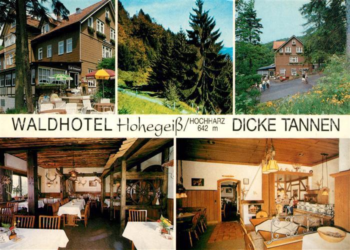 AK / Ansichtskarte Hohegeiss Harz Waldhotel Dicke Tannen Kat. Braunlage