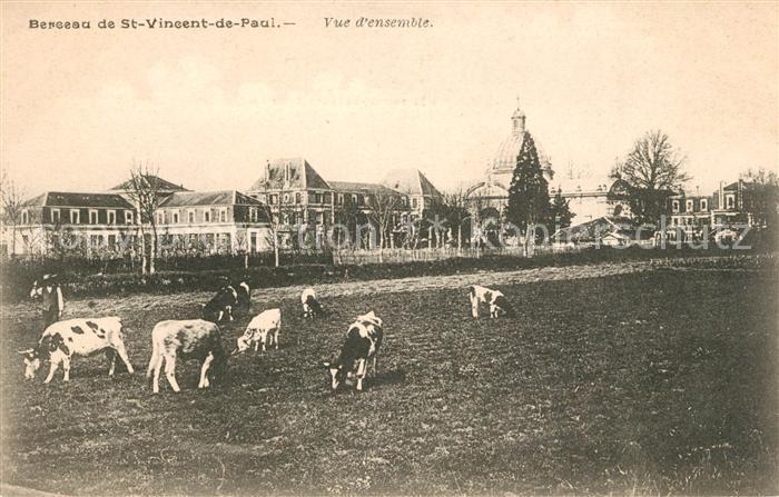 Saint Vincent de Paul Landes Vue d ensemble des vaches Kat. Saint Vincent de Paul