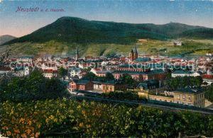 AK / Ansichtskarte Neustadt Haardt Panorama Kat. Neustadt an der Weinstr.