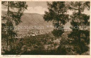 Wehlen Mosel Panorama Blick vom Waldrand aus Kat. Bernkastel Kues